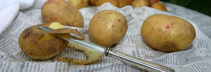 Online-Kinderkochkurs: Kartoffelsuppe